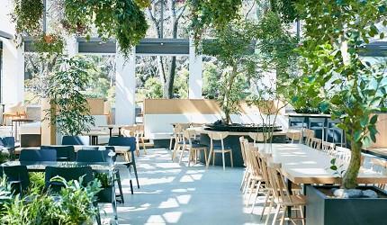 東京自由行東京2021新景點新開幕景點推薦植物園星巴克hanabiyori